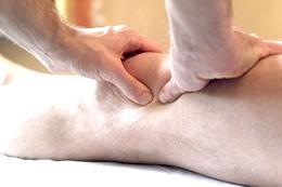 膝のさまざまな症状